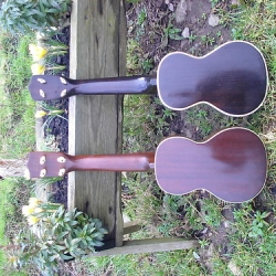 "Gibson & Martin ukes back • <a style=""font-size:0.8em;"" href=""http://www.flickr.com/photos/138964130@N04/24047293331/"" target=""_blank"">View on Flickr</a>"