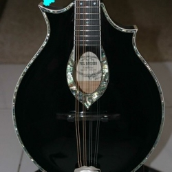 "Mandolins 15308 071 • <a style=""font-size:0.8em;"" href=""http://www.flickr.com/photos/138964130@N04/23832591520/"" target=""_blank"">View on Flickr</a>"
